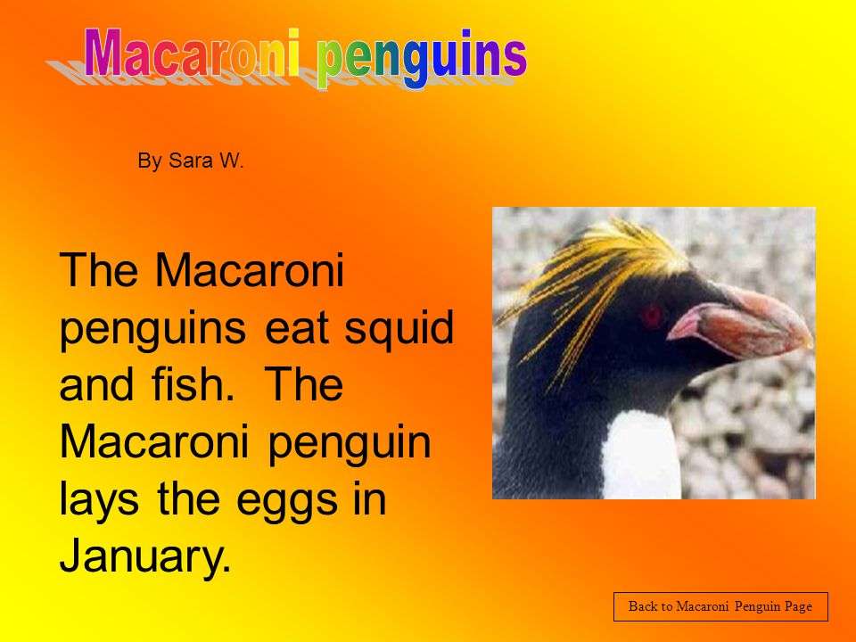 The Emperor penguins hatch in about three months. Also the biggest penguin is four foot tall.