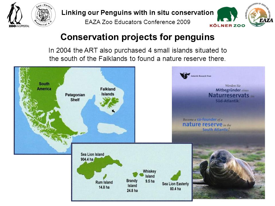 In 2004 the ART also purchased 4 small islands situated to the south of the Falklands to found a nature reserve there.