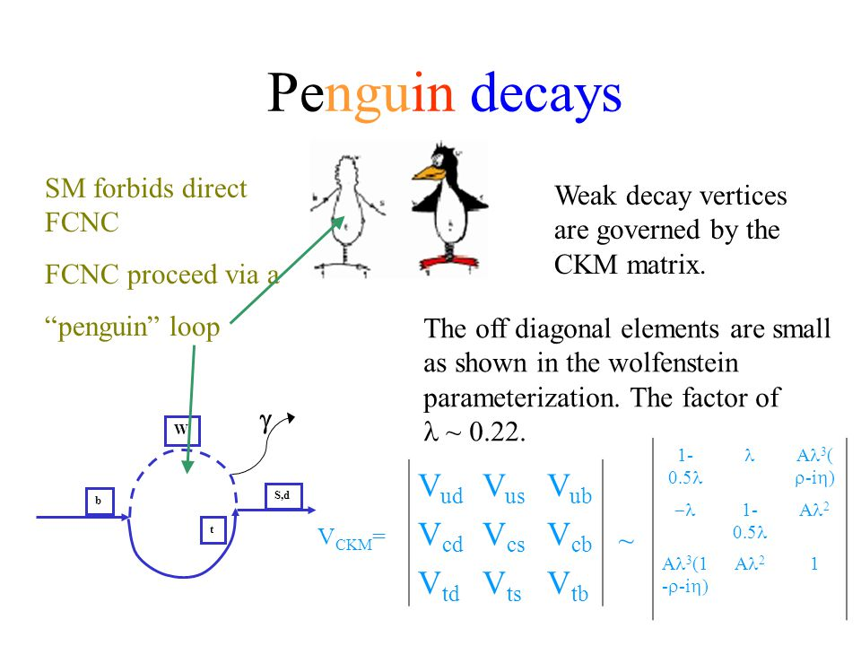 "SM forbids direct FCNC FCNC proceed via a ""penguin"" loop b t W S,d  V ud V us V ub V cd V cs V cb V td V ts V tb V CKM = Weak decay vertices are gove"