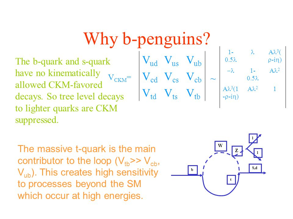 Why b-penguins? V ud V us V ub V cd V cs V cb V td V ts V tb V CKM = ~ 1- 0.5 A 3 (  -i  )  1- 0.5 A 2 A 3 (1 -  -i  ) A 2 1 The b-quark and s-qu