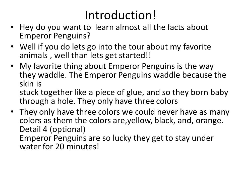 Introduction! Hey do you want to learn almost all the facts about Emperor Penguins? Well if you do lets go into the tour about my favorite animals, we