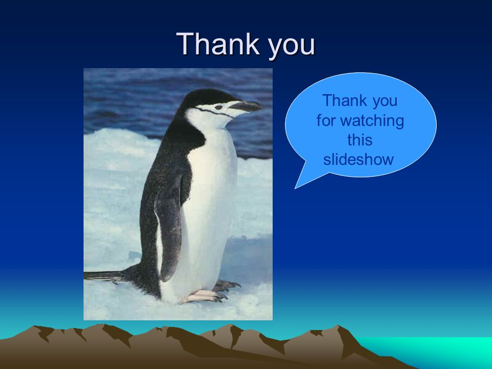 Thank you Thank you for watching this slideshow.