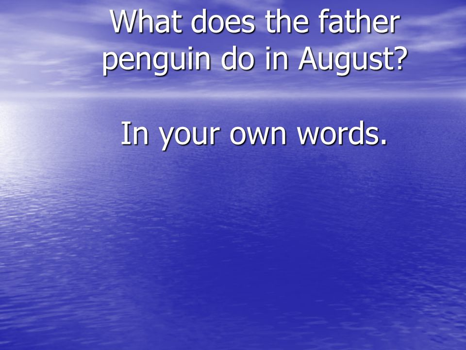 What does the father penguin do in August? In your own words.