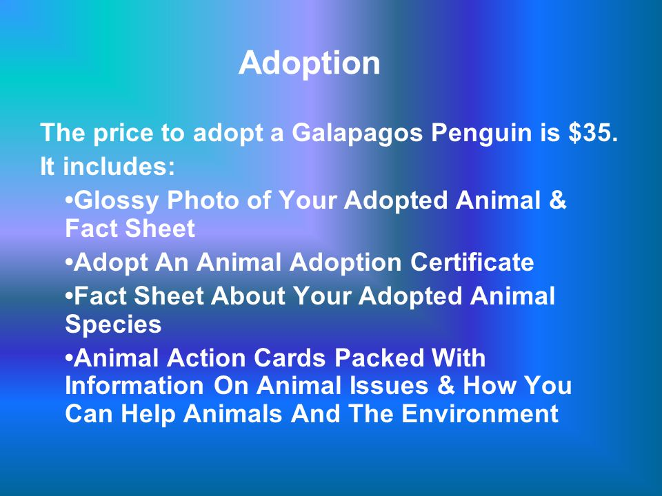 Adoption The price to adopt a Galapagos Penguin is $35.