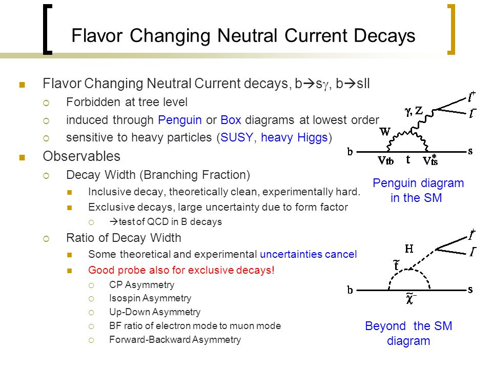Flavor Changing Neutral Current Decays Flavor Changing Neutral Current decays, b  s , b  sll  Forbidden at tree level  induced through Penguin or Box diagrams at lowest order  sensitive to heavy particles (SUSY, heavy Higgs) Observables  Decay Width (Branching Fraction) Inclusive decay, theoretically clean, experimentally hard.