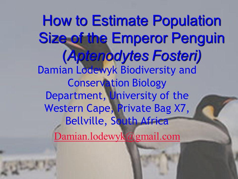 Biology The Emperor Penguin (Aptenodytes Fosteri) Belongs to the Genus Aptenodytes.