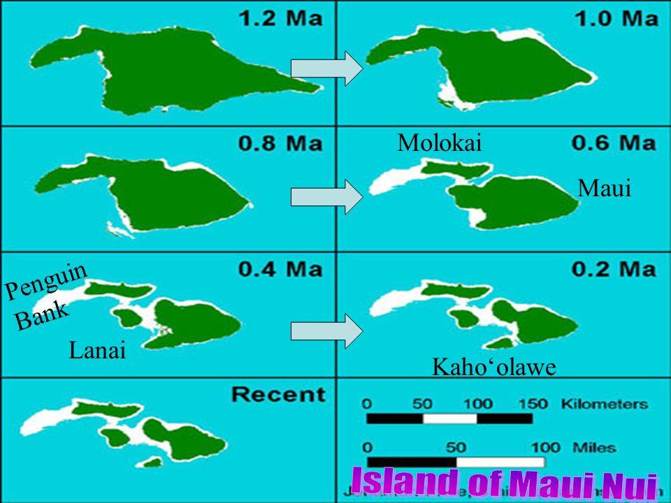 Maui Molokai Lanai Penguin Bank Kaho'olawe