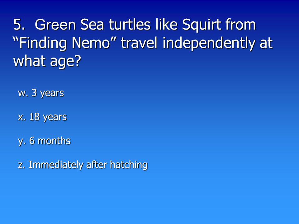 5. Green Sea turtles like Squirt from Finding Nemo travel independently at what age.