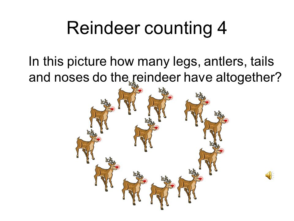 Reindeer counting 4 In this picture how many legs, antlers, tails and noses do the reindeer have altogether?
