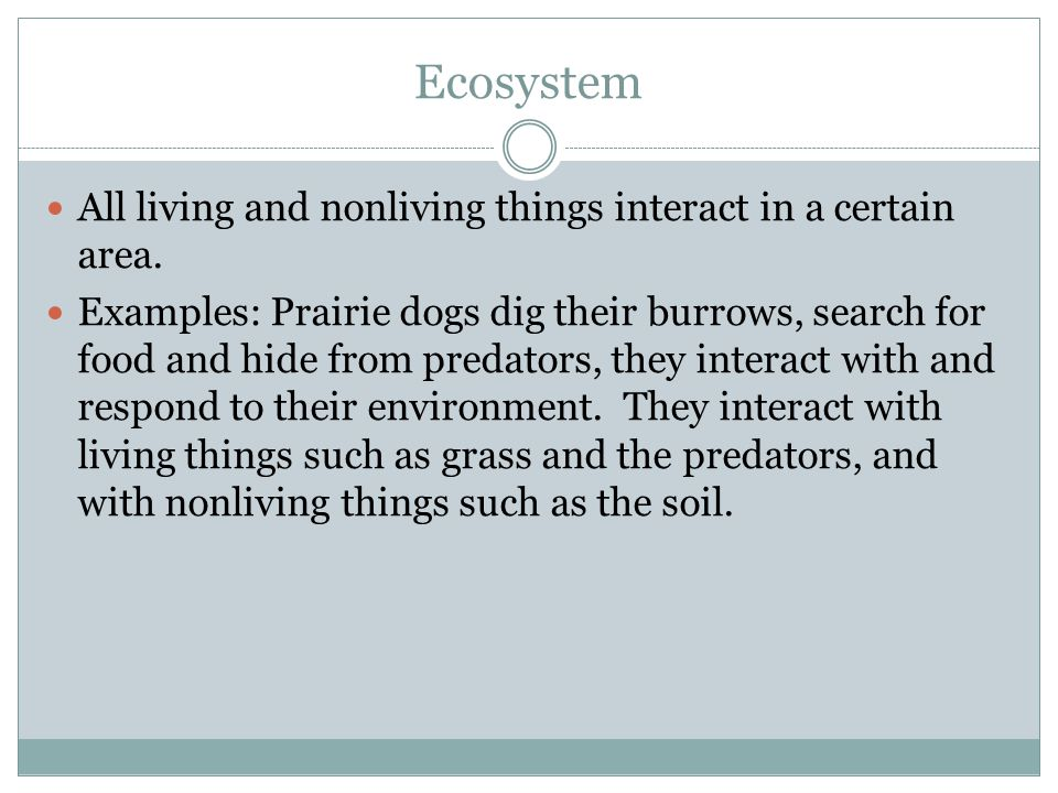 Ecosystem All living and nonliving things interact in a certain area.