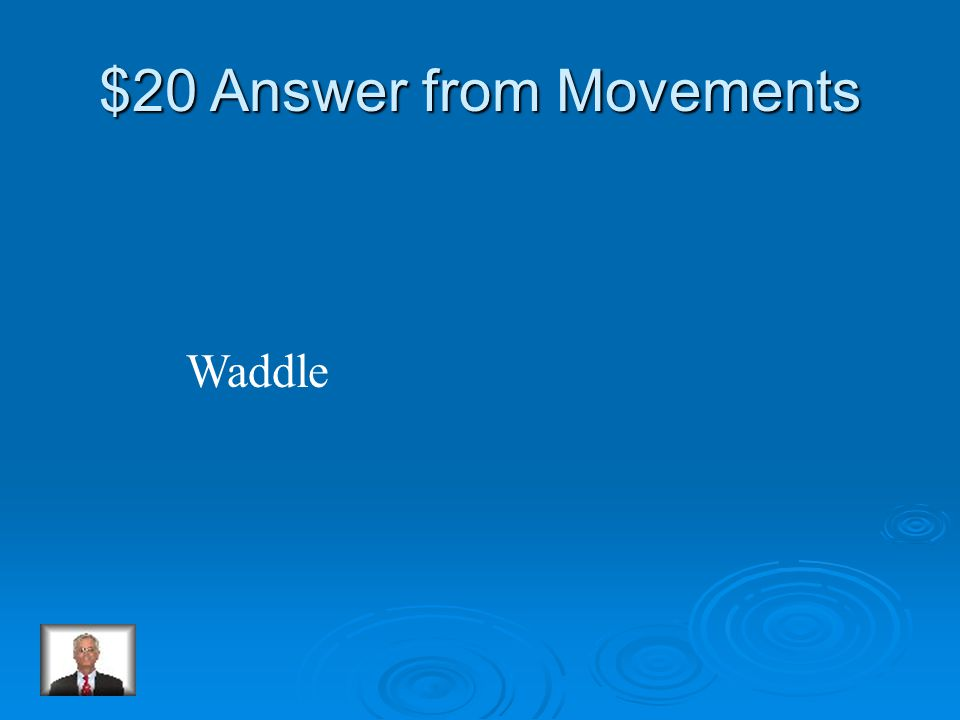 $20 Question from Movements How does a penguin walk