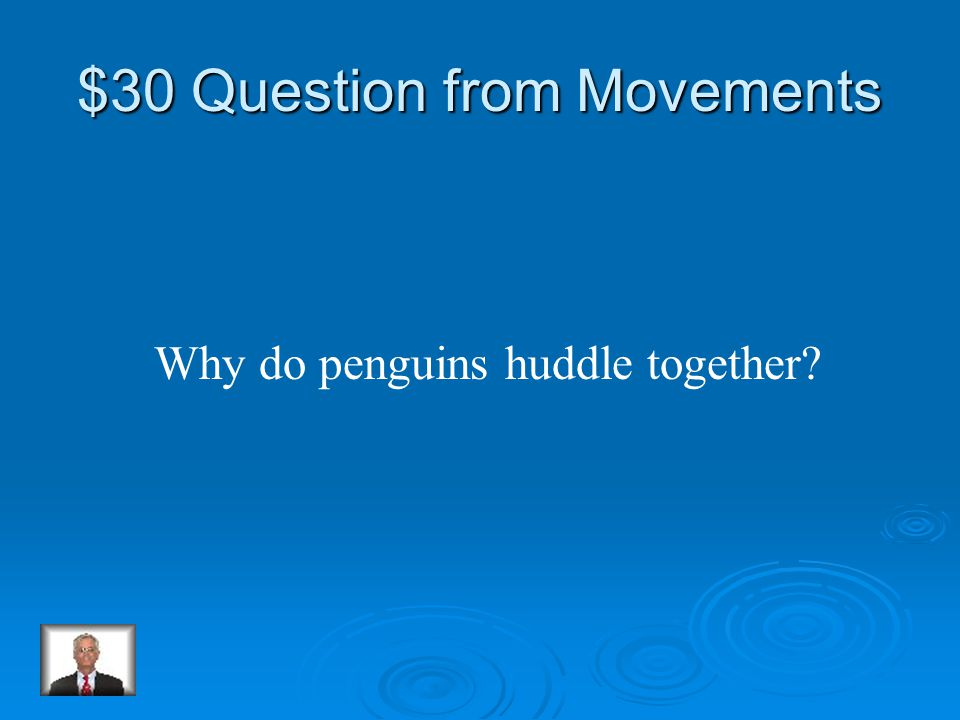 $20 Answer from Movements Waddle