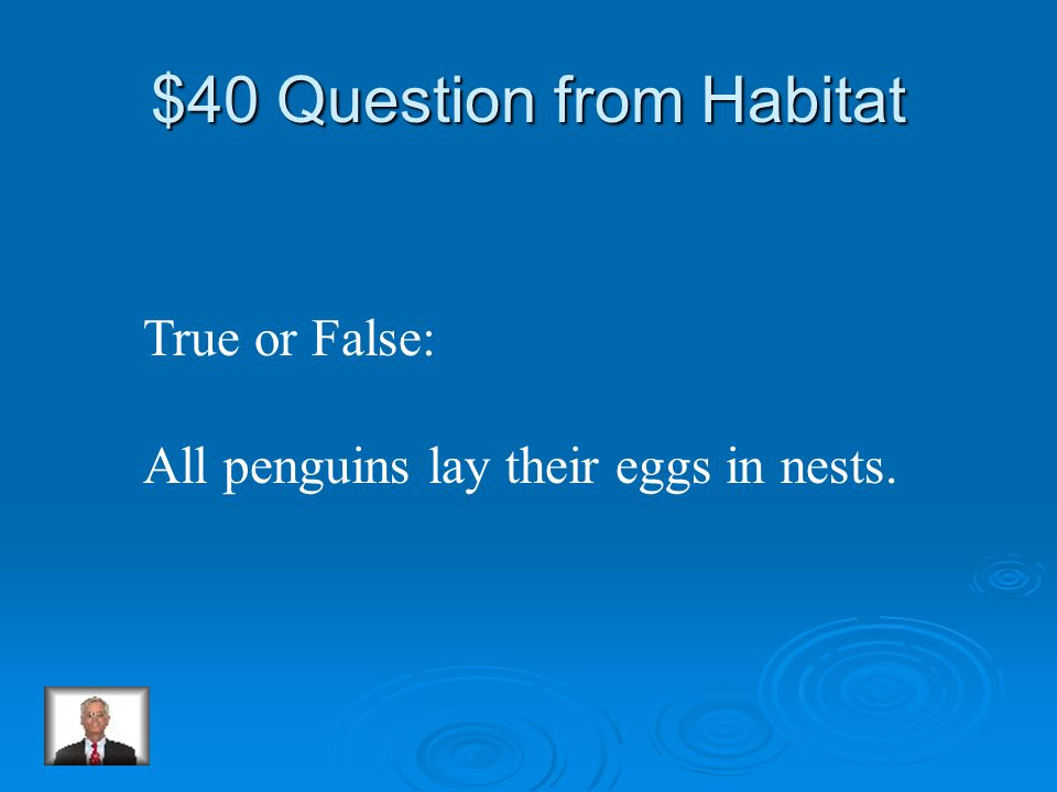 $30 Answer from Habitat Colony