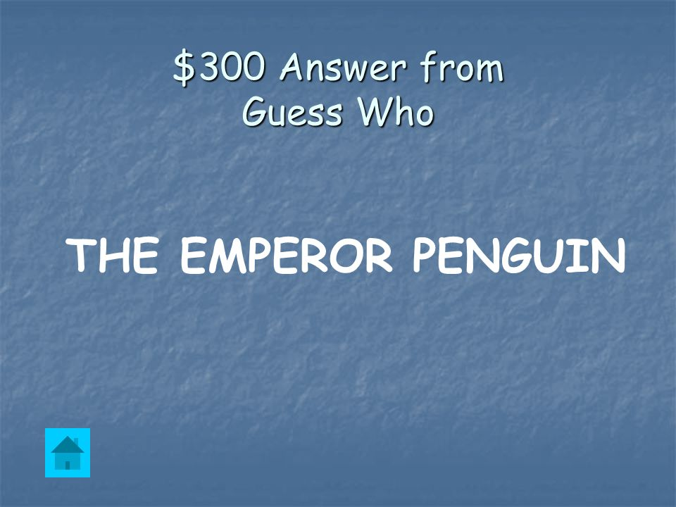 $300 Question from Guess Who This is the largest penguin in the world.