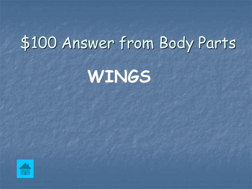 $100 Question from Body Parts Penguins have these but they don't fly.