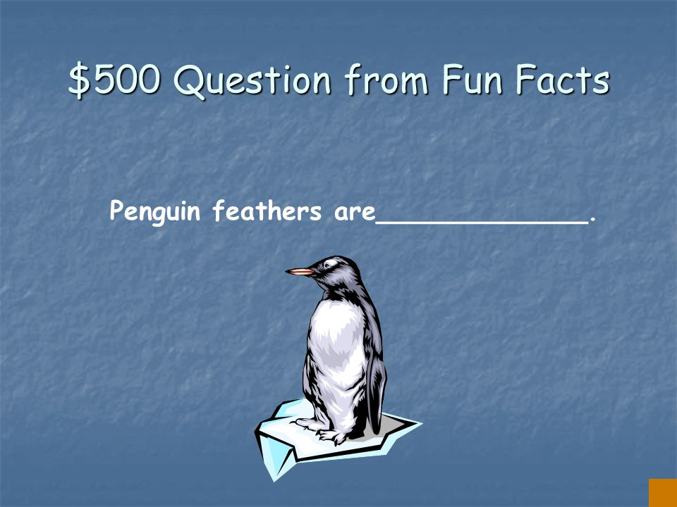 $400 Answer from Fun Facts PECK