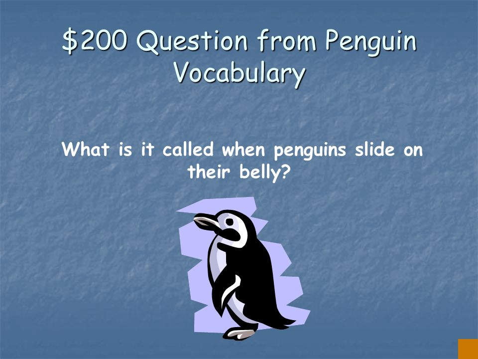 $100 Answer from Penguin Vocabulary SQUID