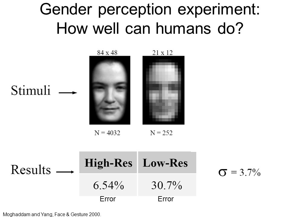 Gender perception experiment: How well can humans do Error