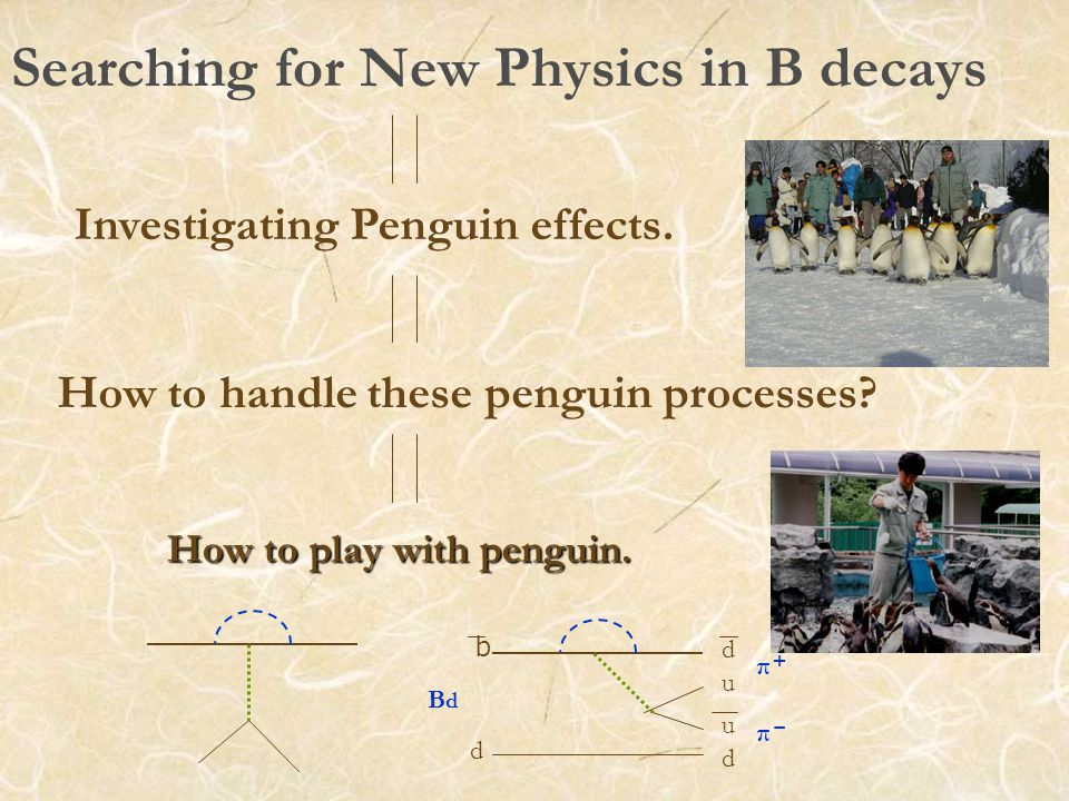 Searching for New Physics in B decays Investigating Penguin effects.