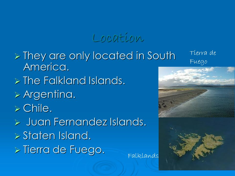 Location  They are only located in South America.