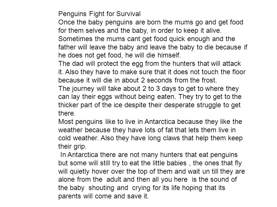 Penguins Fight for Survival Once the baby penguins are born the mums go and get food for them selves and the baby, in order to keep it alive.