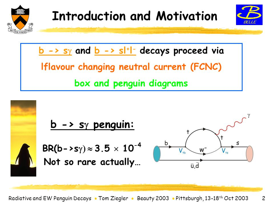 Radiative and EW Penguin Decays  Tom Ziegler  Beauty 2003  Pittsburgh, 13-18 th Oct 2003 23 ChannelBR (@90% C.L.)  L dt =================================================== B->ee< 1.9  10 -7 78 fb -1 Belle B->  < 1.6  10 -7 78 fb -1 Belle B->e  < 1.7  10 -7 78 fb -1 Belle ChannelBR (@90% C.L.)  L dt =================================================== B->ee< 1.9  10 -7 78 fb -1 Belle B->  < 1.6  10 -7 78 fb -1 Belle B->e  < 1.7  10 -7 78 fb -1 Belle B->  < 2.5  10 -7 113 pb -1 CDF B s ->  < 9.5  10 -7 113 pb -1 CDF B s ->  < 16  10 -7 100 pb -1 D0 --------------------------------------------------- B->e < 5.4  10 -6 60 fb -1 Belle B->  < 6.8  10 -6 60 fb -1 Belle B->  < 6.6  10 -6 81 fb -1 Babar B->  < 4.1  10 -4 81 fb -1 Babar Status of B  ll