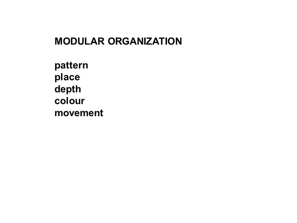 MODULAR ORGANIZATION pattern place depth colour movement