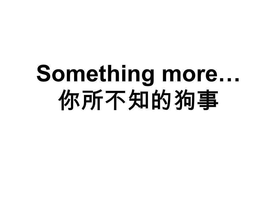 Something more… 你所不知的狗事