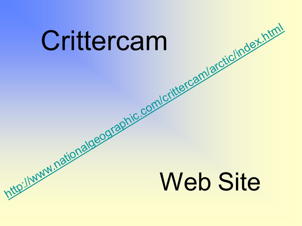 Crittercam http://www.nationalgeographic.com/crittercam/arctic/index.html Web Site