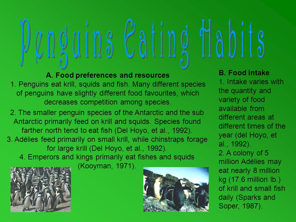 A. Food preferences and resources 1. Penguins eat krill, squids and fish.