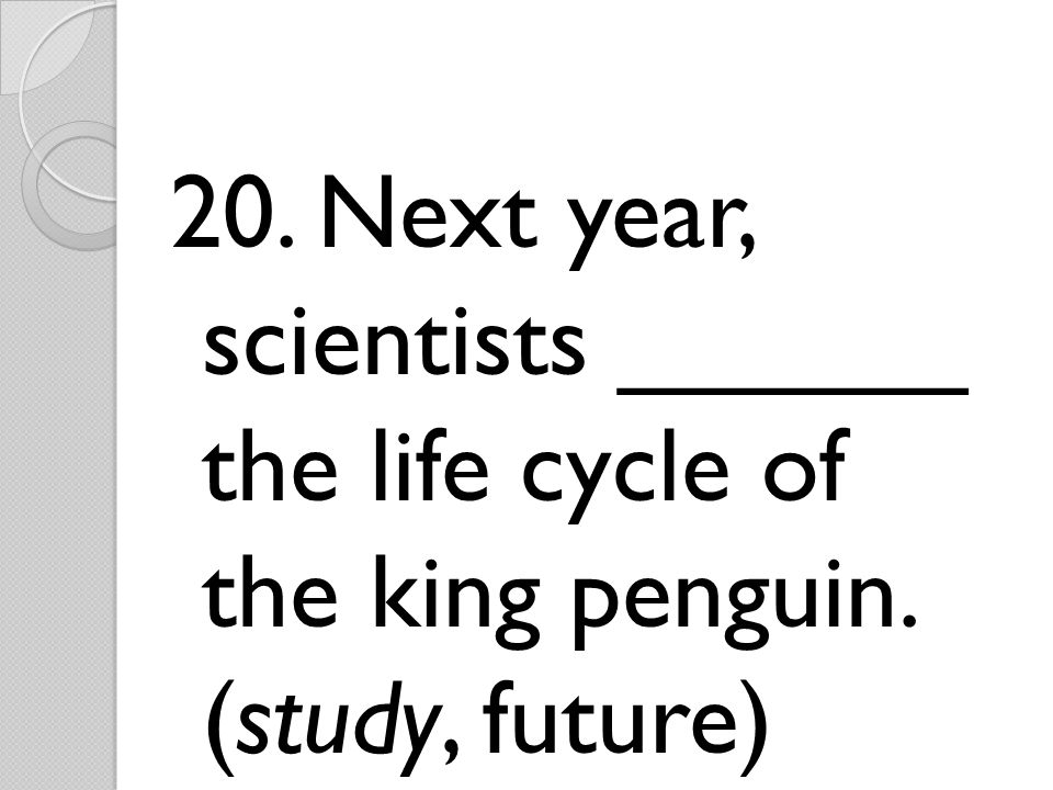 20. Next year, scientists ______ the life cycle of the king penguin. (study, future)