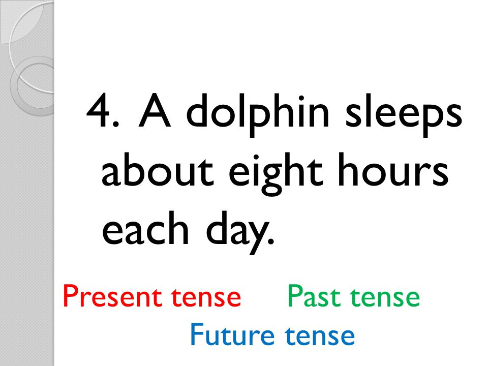 5.A newborn dolphin will spend the next three to six years with its mother.