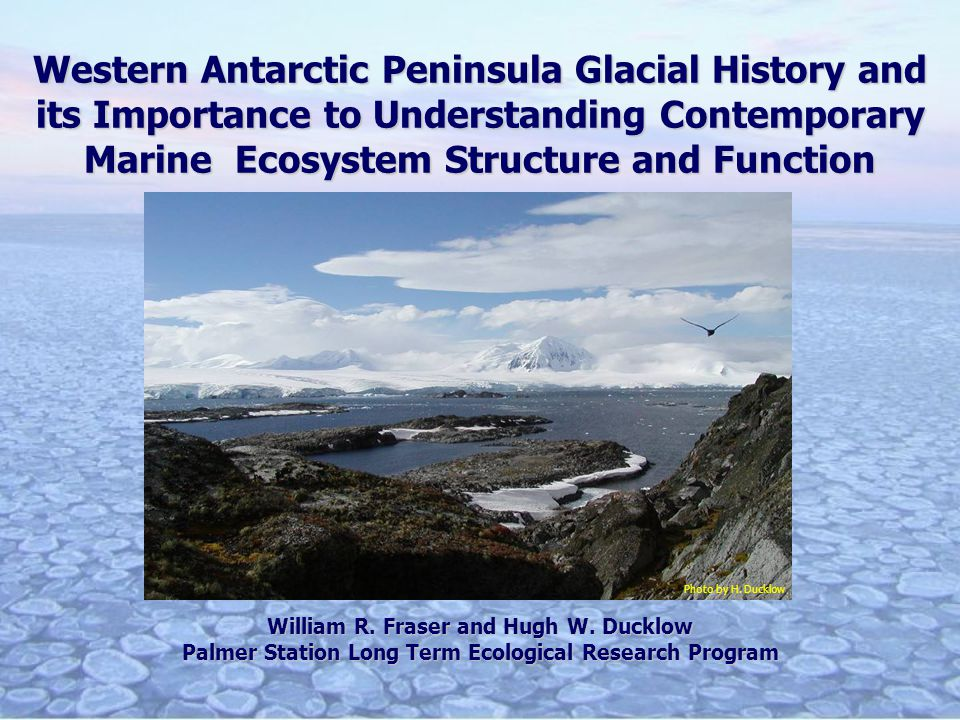 Western Antarctic Peninsula Glacial History and its Importance to Understanding Contemporary Marine Ecosystem Structure and Function William R.
