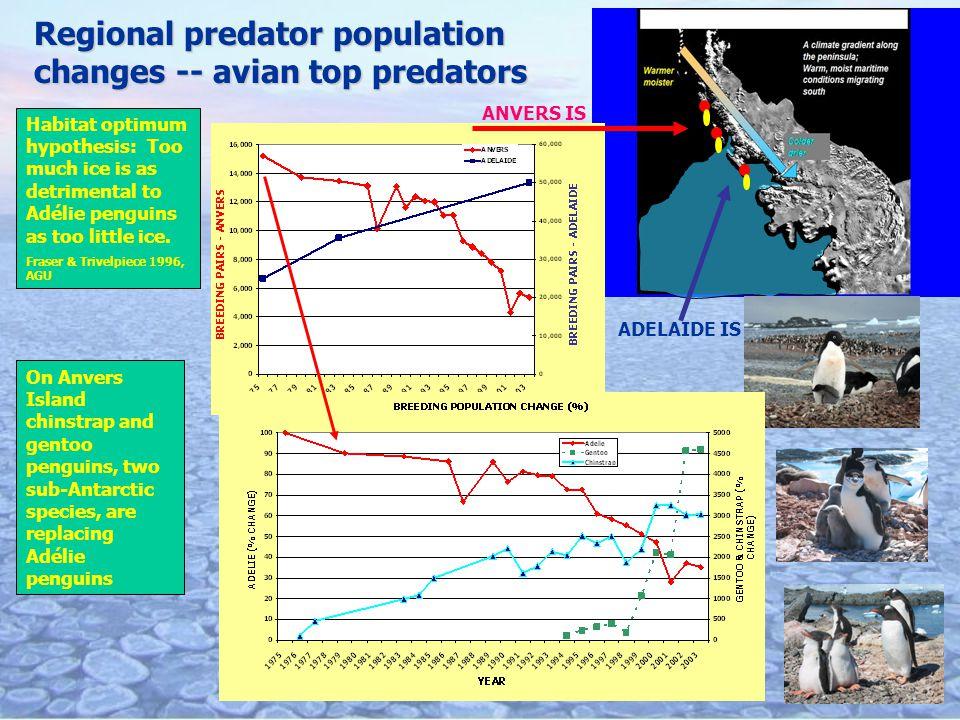 Regional predator population changes -- avian top predators Habitat optimum hypothesis: Too much ice is as detrimental to Adélie penguins as too little ice.