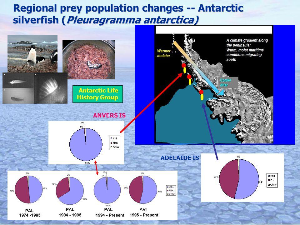 Regional prey population changes -- Antarctic silverfish (Pleuragramma antarctica) ANVERS IS ADELAIDE IS Antarctic Life History Group