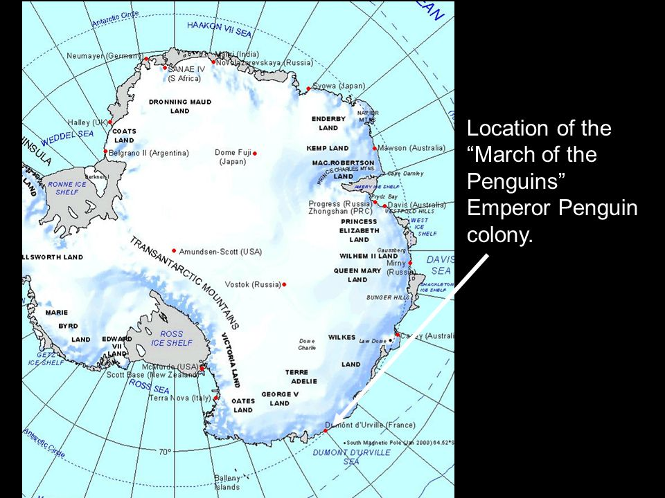Location of the March of the Penguins Emperor Penguin colony.