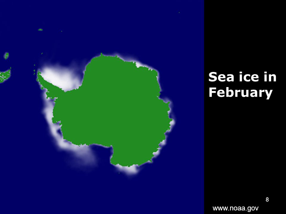 8 Sea ice in February www.noaa.gov