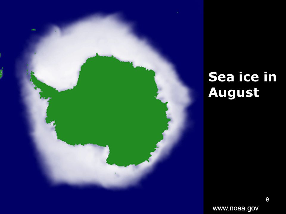 9 Sea ice in August www.noaa.gov