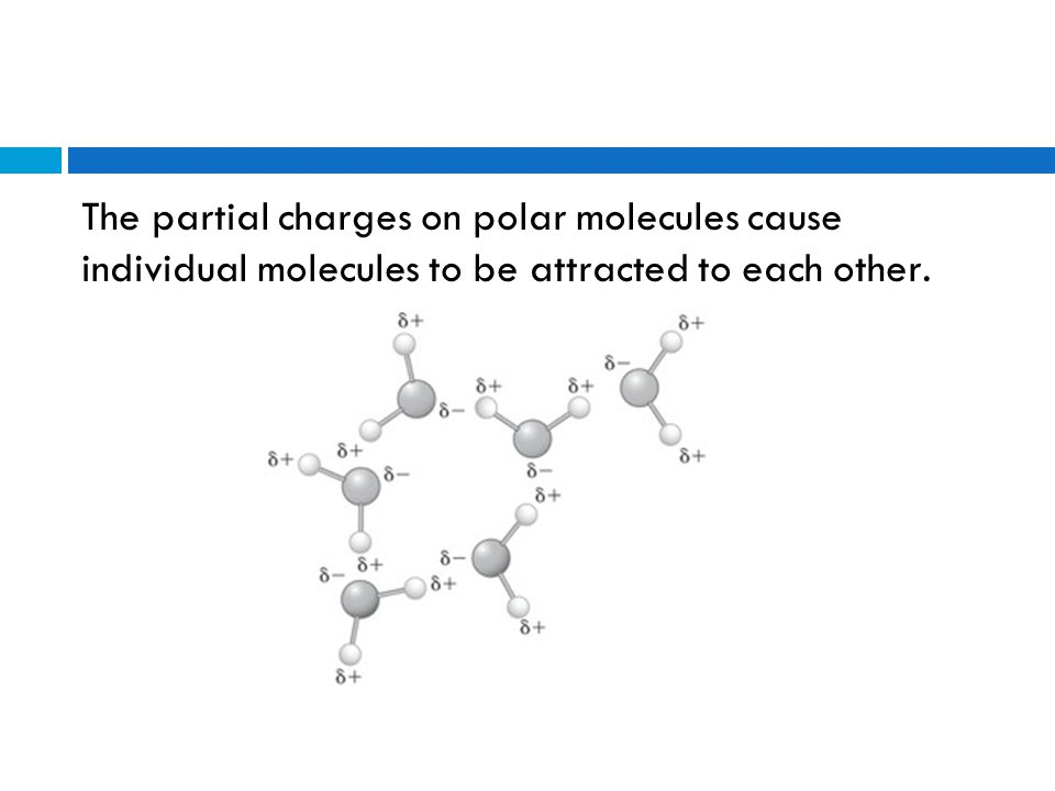 Polar Molecules  One end of a polar molecule has a partial negative charge, and the other end of the molecule has a partial positive charge.