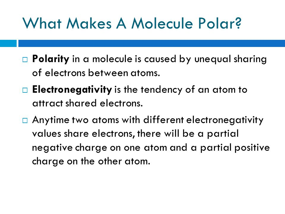Check In : In your Cornell Notes answer the following questions 1. Explain in your own words what a polar molecule is 2. What are intermolecular attra
