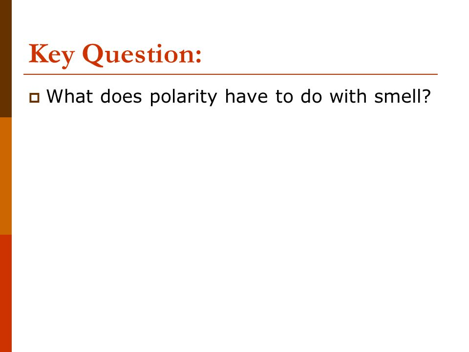 Key Question:  What does polarity have to do with smell?