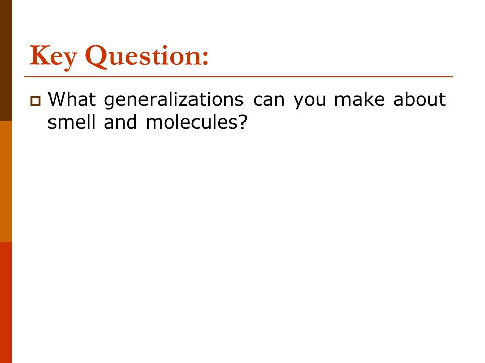Key Question:  What generalizations can you make about smell and molecules?
