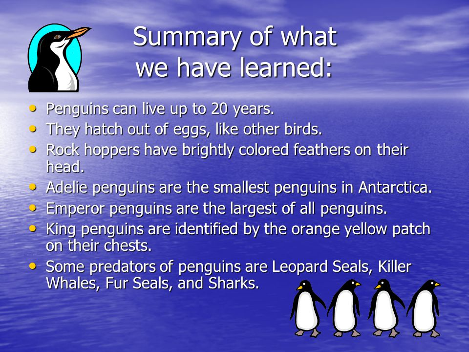 Summary of what we have learned: Penguins can live up to 20 years.