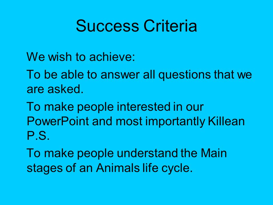 Success Criteria We wish to achieve: To be able to answer all questions that we are asked. To make people interested in our PowerPoint and most import