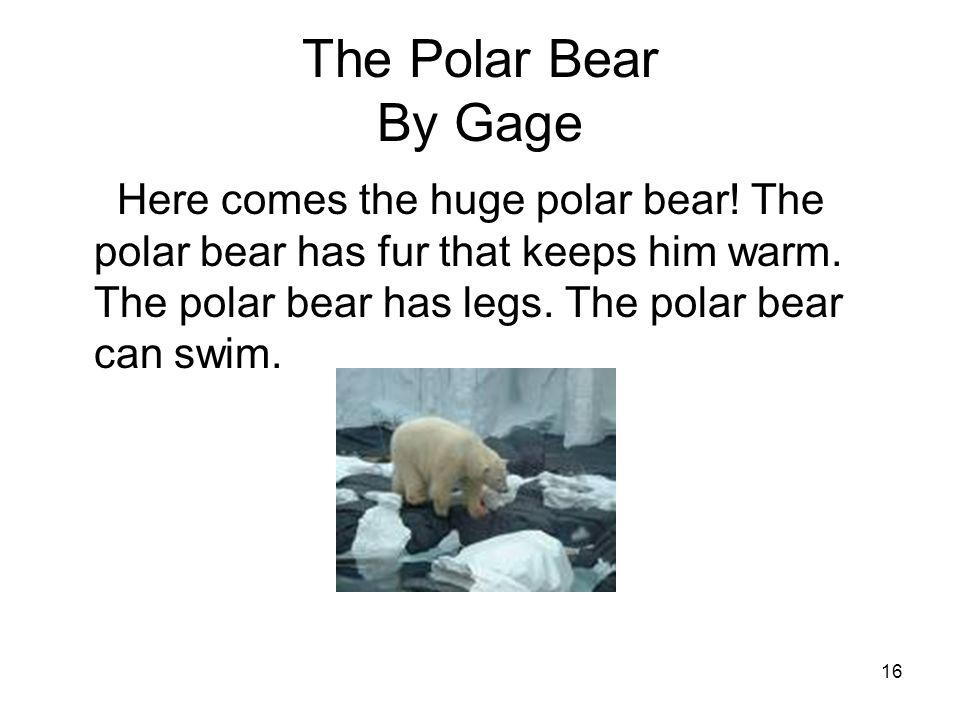 16 The Polar Bear By Gage Here comes the huge polar bear.