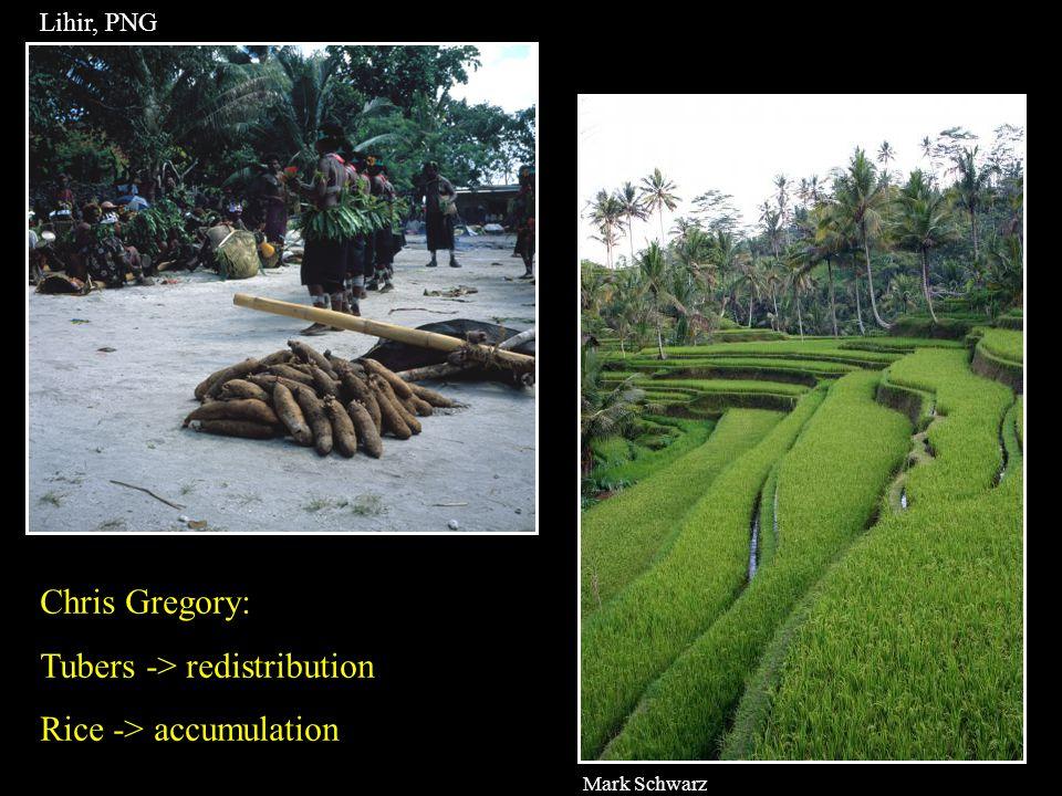 Mark Schwarz Lihir, PNG Chris Gregory: Tubers -> redistribution Rice -> accumulation