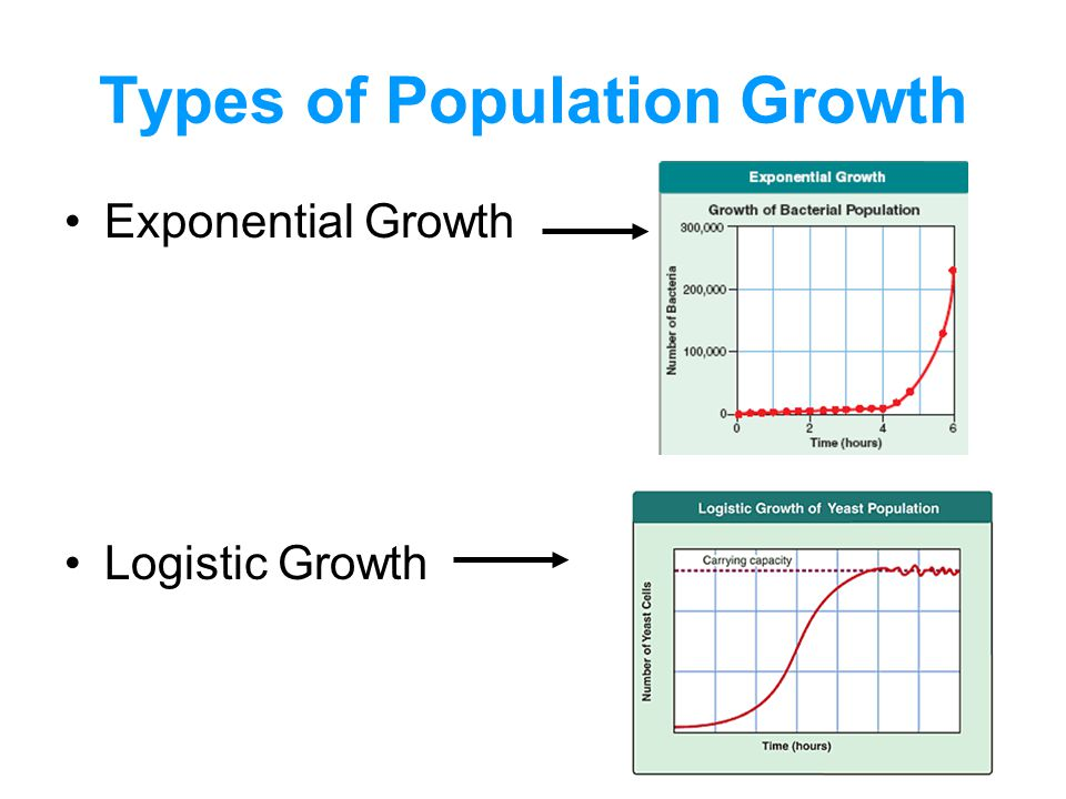 Types of Population Growth Exponential Growth Logistic Growth