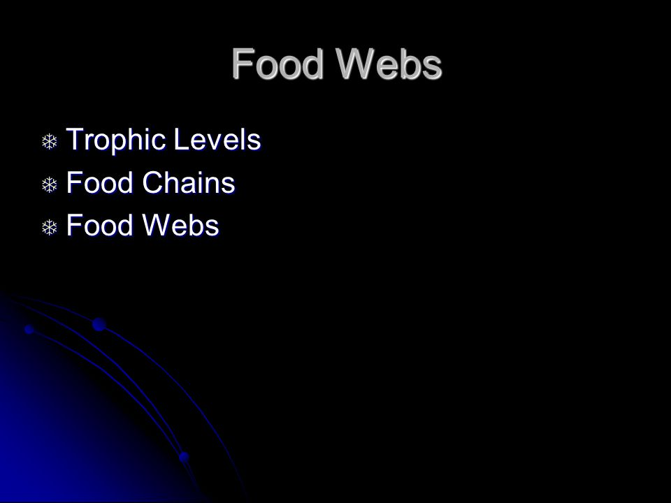 Food Webs  Trophic Levels  Food Chains  Food Webs