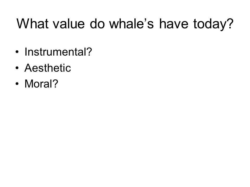 What value do whale's have today? Instrumental? Aesthetic Moral?