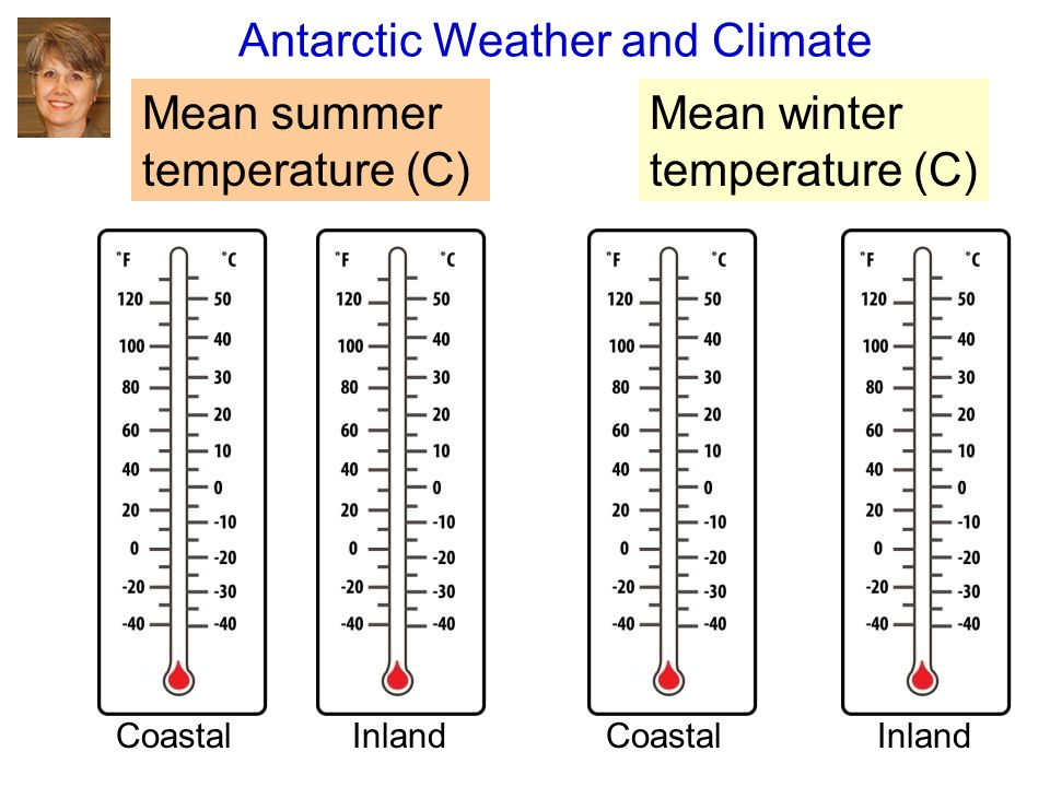 Antarctic Weather and Climate Mean summer temperature (C) Mean winter temperature (C) CoastalInlandCoastalInland